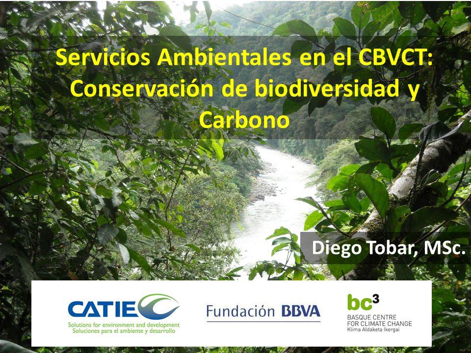 Servicios Ambientales en el CBVCT: Conservación de biodiversidad y Carbono Diego Tobar, MSc.