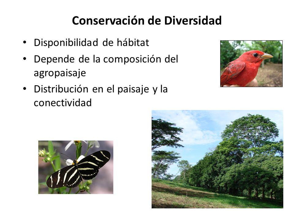 Conservación de Diversidad Disponibilidad de hábitat Depende de la composición del agropaisaje Distribución en el paisaje y la conectividad