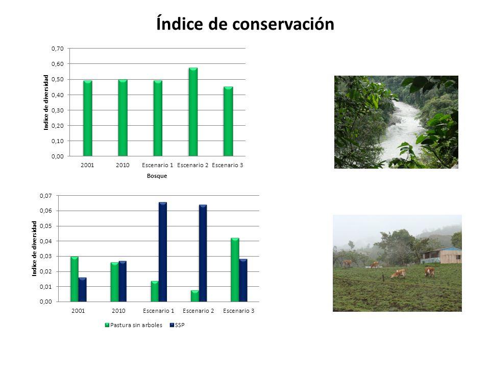 Índice de conservación