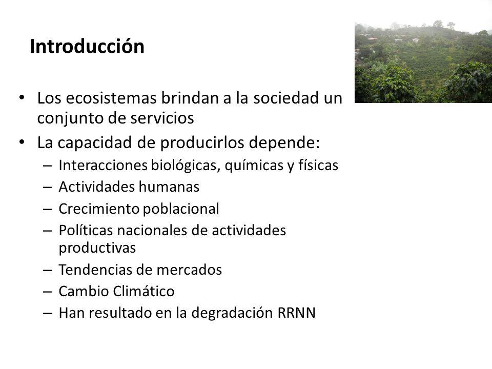 Introducción Los ecosistemas brindan a la sociedad un conjunto de servicios La capacidad de producirlos depende: – Interacciones biológicas, químicas