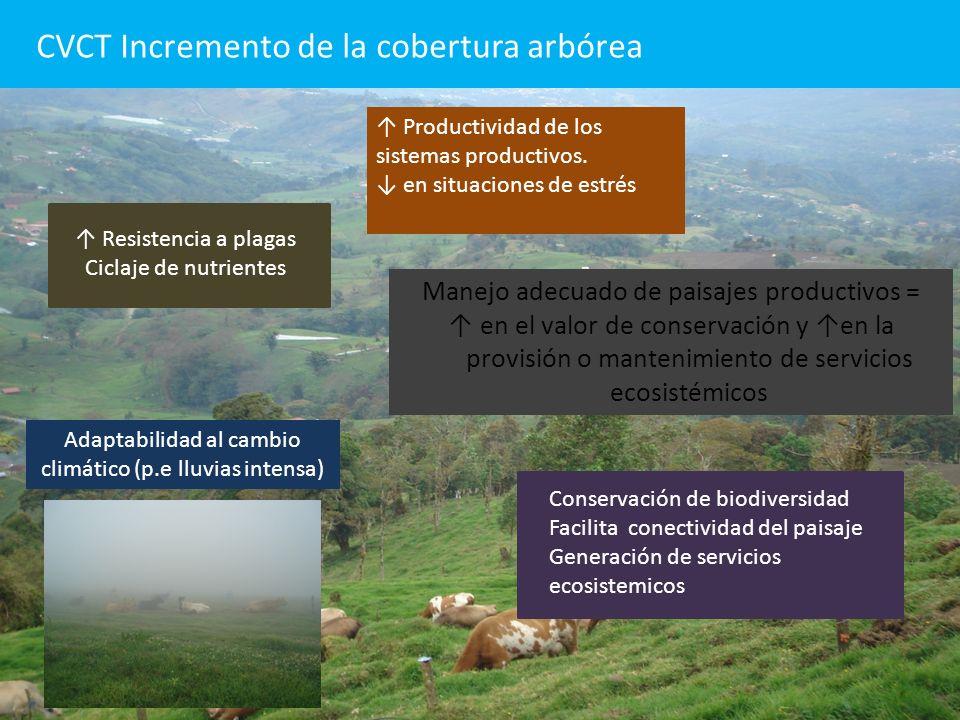 CVCT Incremento de la cobertura arbórea Productividad de los sistemas productivos. en situaciones de estrés Resistencia a plagas Ciclaje de nutrientes