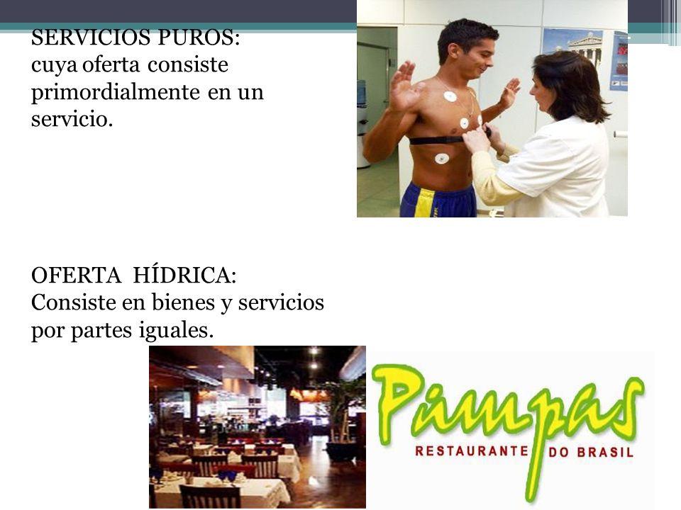 SERVICIO CON BIENES ACOMPAÑANT ES MENORES : Servicio principal junto con bienes de apoyo.