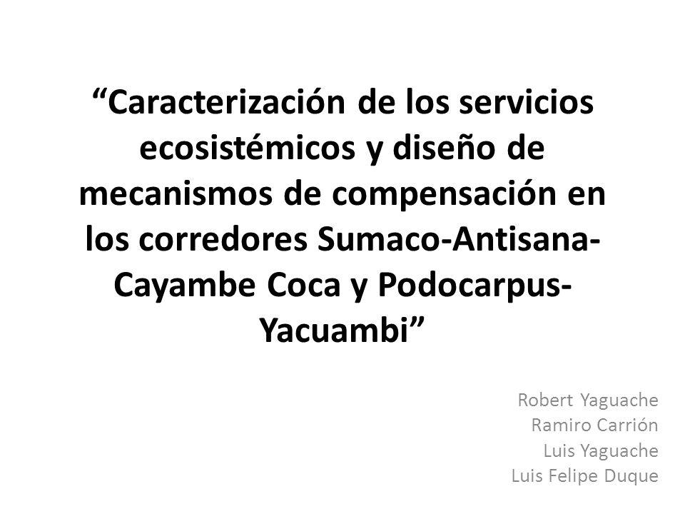 Caracterización de los servicios ecosistémicos y diseño de mecanismos de compensación en los corredores Sumaco-Antisana- Cayambe Coca y Podocarpus- Ya
