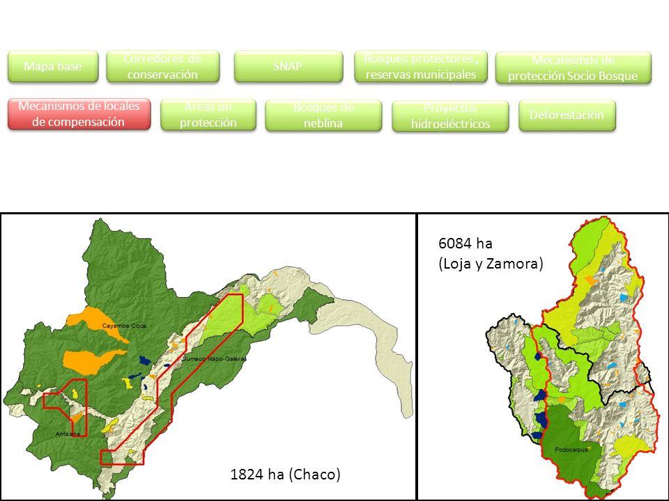 Mapa base Áreas sin protección Corredores de conservación Corredores de conservación SNAP Mecanismos de protección Socio Bosque Mecanismos de protecci