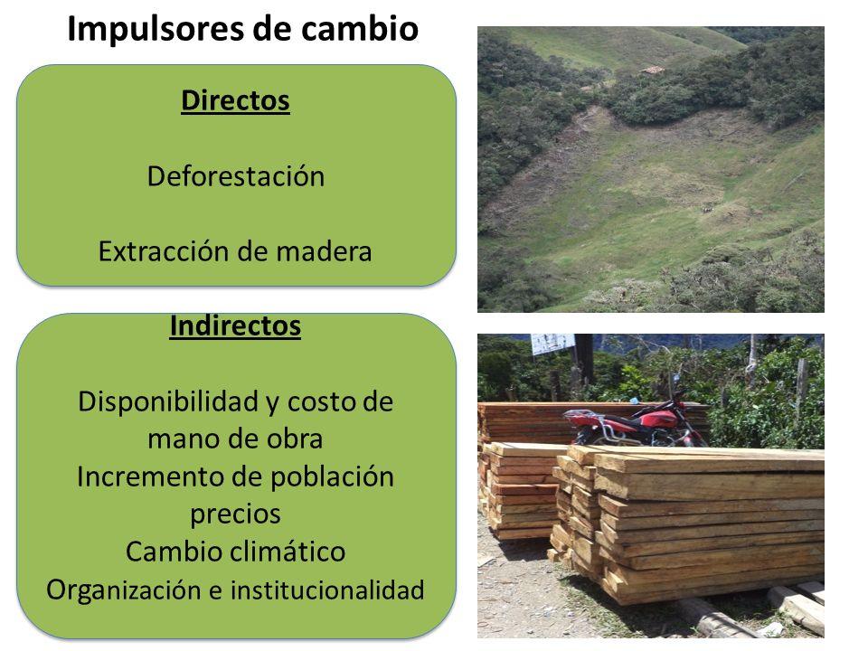 Impulsores de cambio Directos Deforestación Extracción de madera Directos Deforestación Extracción de madera Indirectos Disponibilidad y costo de mano