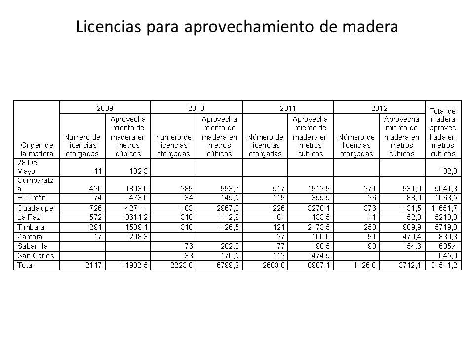 Licencias para aprovechamiento de madera