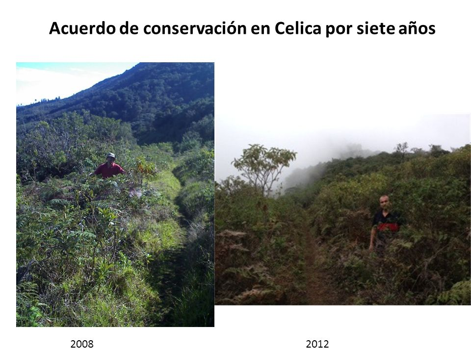 Acuerdo de conservación en Celica por siete años 20082012