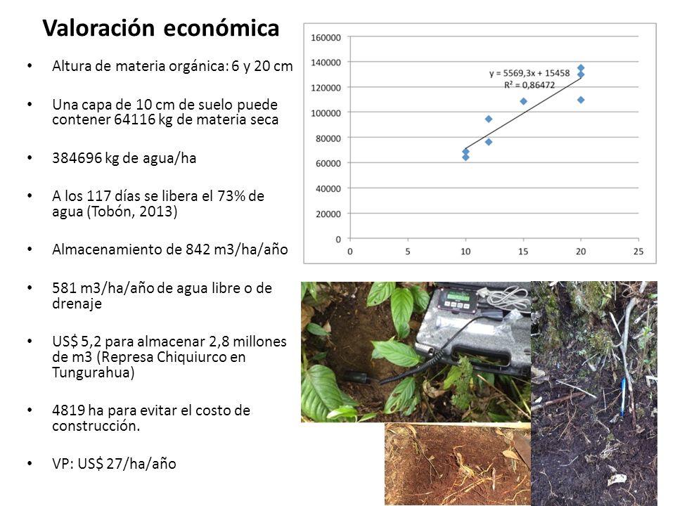 Valoración económica Altura de materia orgánica: 6 y 20 cm Una capa de 10 cm de suelo puede contener 64116 kg de materia seca 384696 kg de agua/ha A l