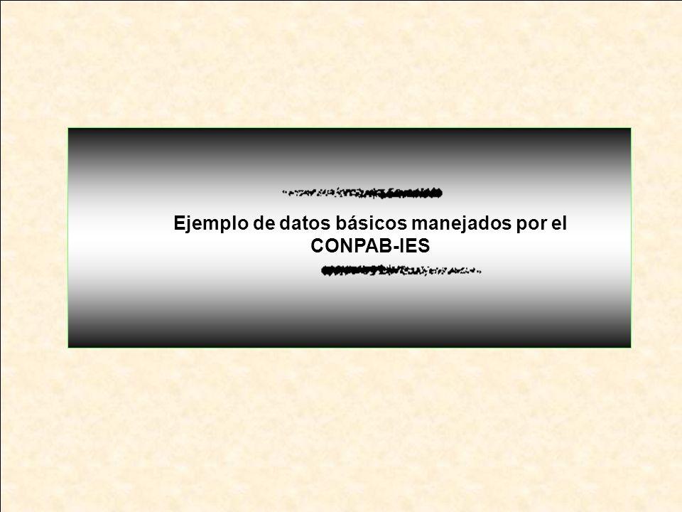 Ejemplo de datos básicos manejados por el CONPAB-IES
