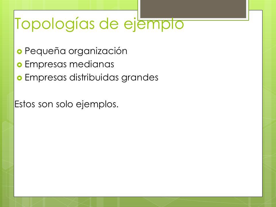 Topologías de ejemplo Pequeña organización Empresas medianas Empresas distribuidas grandes Estos son solo ejemplos.