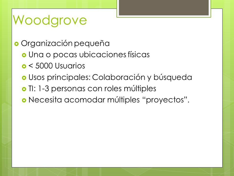 Woodgrove Organización pequeña Una o pocas ubicaciones físicas < 5000 Usuarios Usos principales: Colaboración y búsqueda TI: 1-3 personas con roles mú
