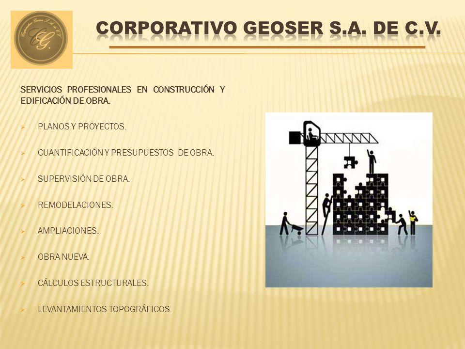 SERVICIOS PROFESIONALES EN CONSTRUCCIÓN Y EDIFICACIÓN DE OBRA.