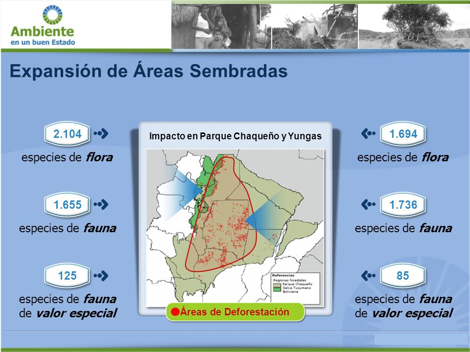 La soja y el cambio climático 25% Emisiones vinculadas a la Soja Emisiones de gases efecto invernadero - Sector agrícola + 11,25 % crecimiento anual