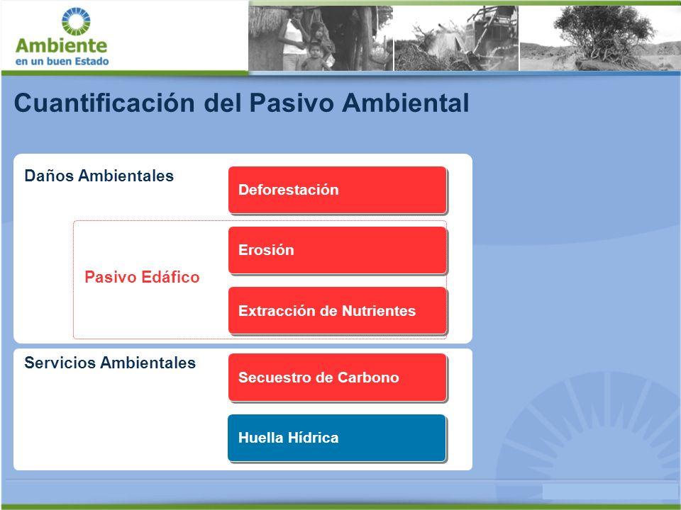 Deforestación - Parque Chaqueño 560.870 2.122.4071.561.537 1.985.136 Total área sembrada 1997/98 Total área sembrada 2005/06 en Parque Chaqueño Aumento del área sembrada 1998 al 2006 Deforestación 1998 al 2006 [ha]