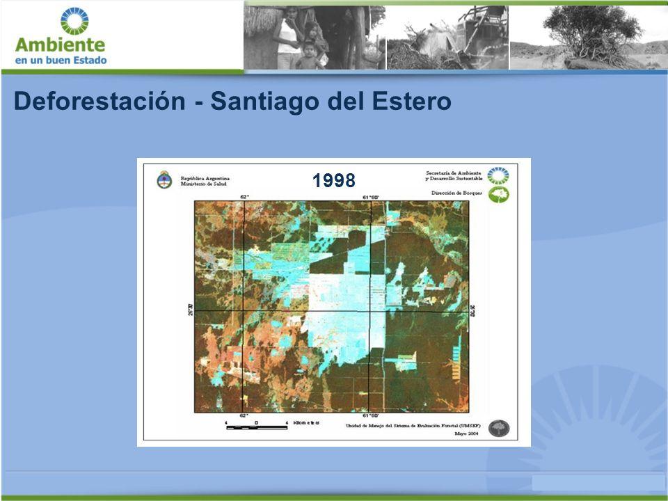 Deforestación - Santiago del Estero 2002
