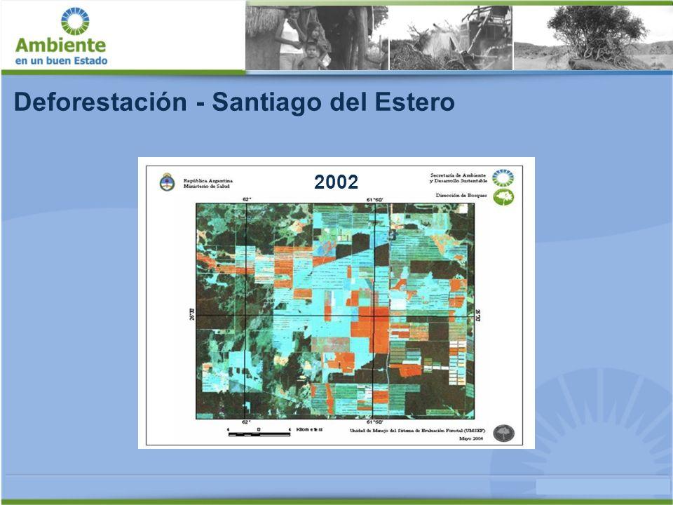Deforestación - Santiago del Estero 2004