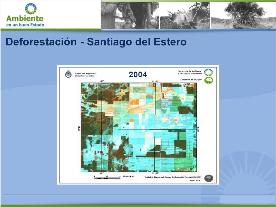 Deforestación Tasa anual 2002-2006 [%] Tasa Mundial -0,18 -0,25 -0,54 -0,65 -1,54 -2,17 -2,54 x1,4x3,0x3,6x8,5x12,0x14,0