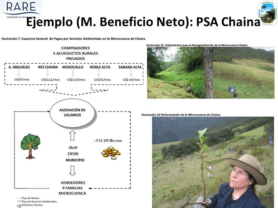 Ejemplo (M. Beneficio Neto): PSA Chaina