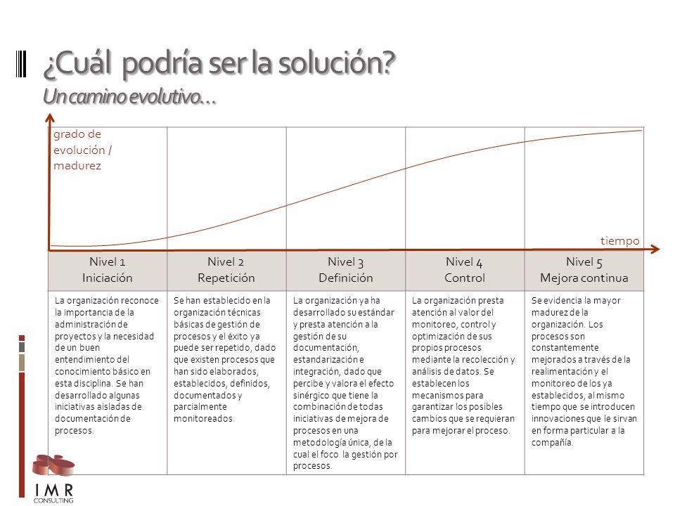¿Cuál podría ser la solución? Un camino evolutivo… Nivel 1 Iniciación Nivel 2 Repetición Nivel 3 Definición Nivel 4 Control Nivel 5 Mejora continua La