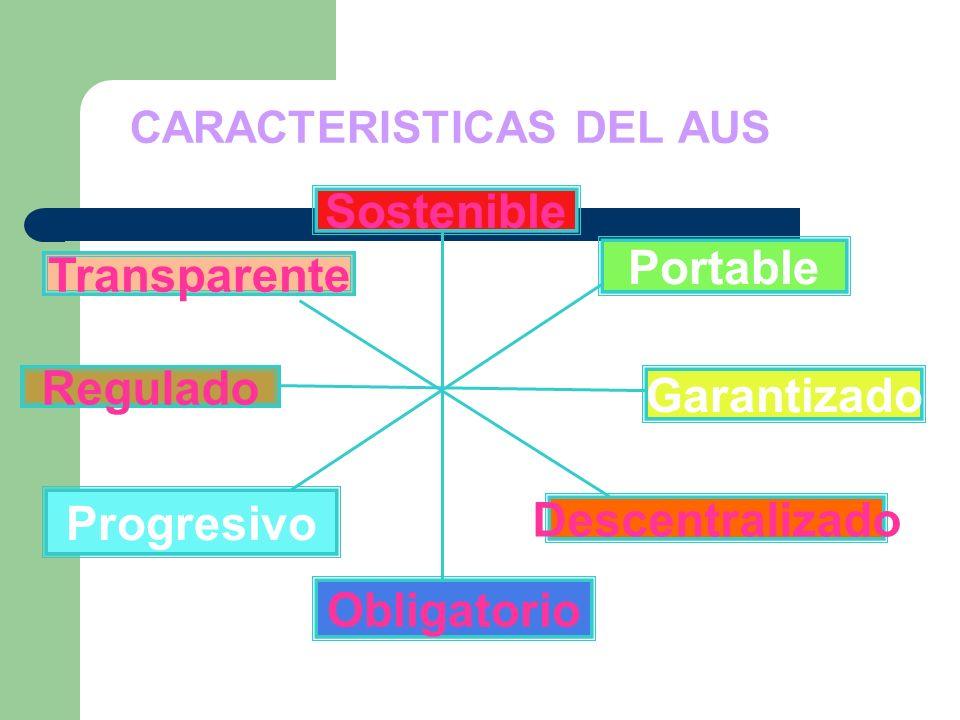 CARACTERISTICAS DEL AUS.