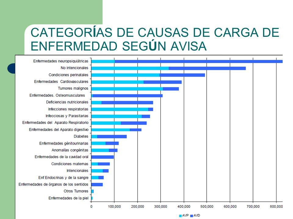 CATEGORÍAS DE CAUSAS DE CARGA DE ENFERMEDAD SEGÚN AVISA