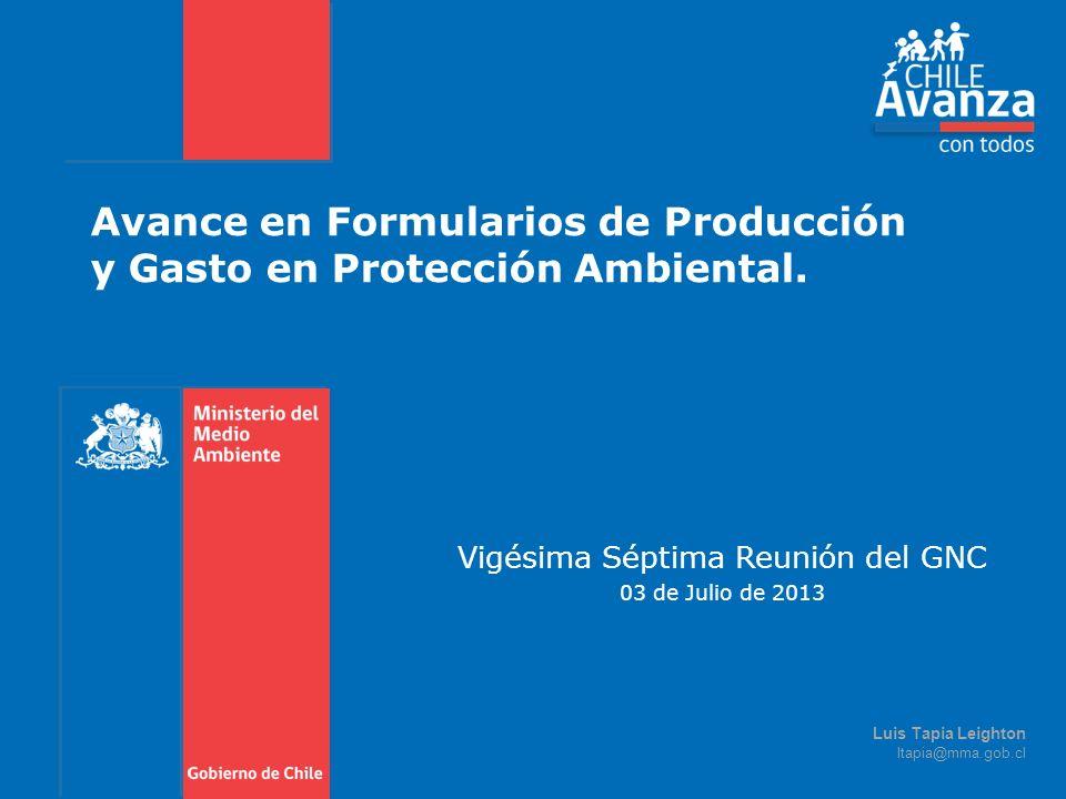 Avance en Formularios de Producción y Gasto en Protección Ambiental. Vigésima Séptima Reunión del GNC 03 de Julio de 2013 Luis Tapia Leighton ltapia@m