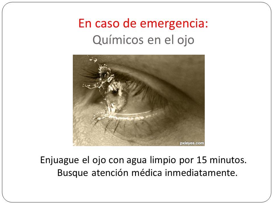En caso de emergencia: Químicos en el ojo Enjuague el ojo con agua limpio por 15 minutos. Busque atención médica inmediatamente.