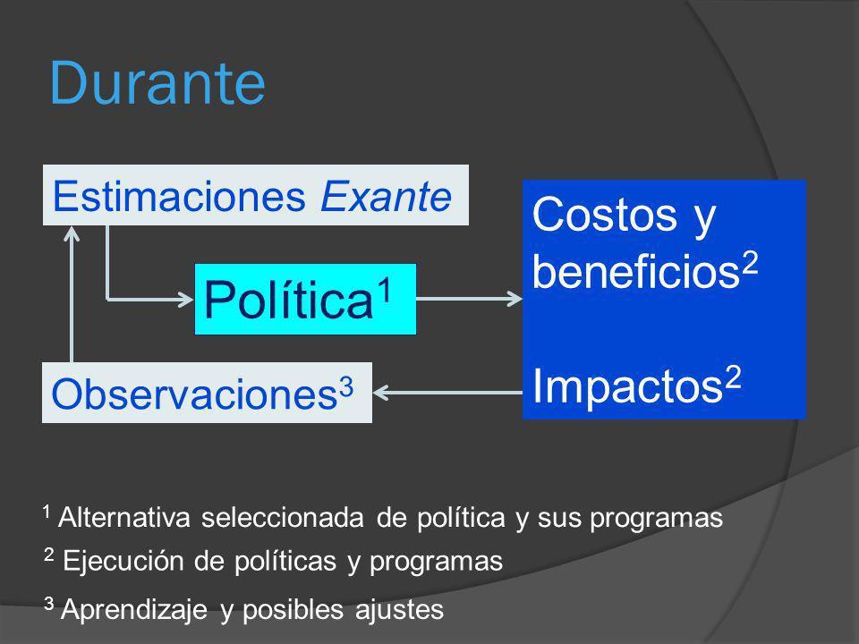 Durante Política 1 2 Ejecución de políticas y programas Estimaciones Exante Costos y beneficios 2 Impactos 2 1 Alternativa seleccionada de política y