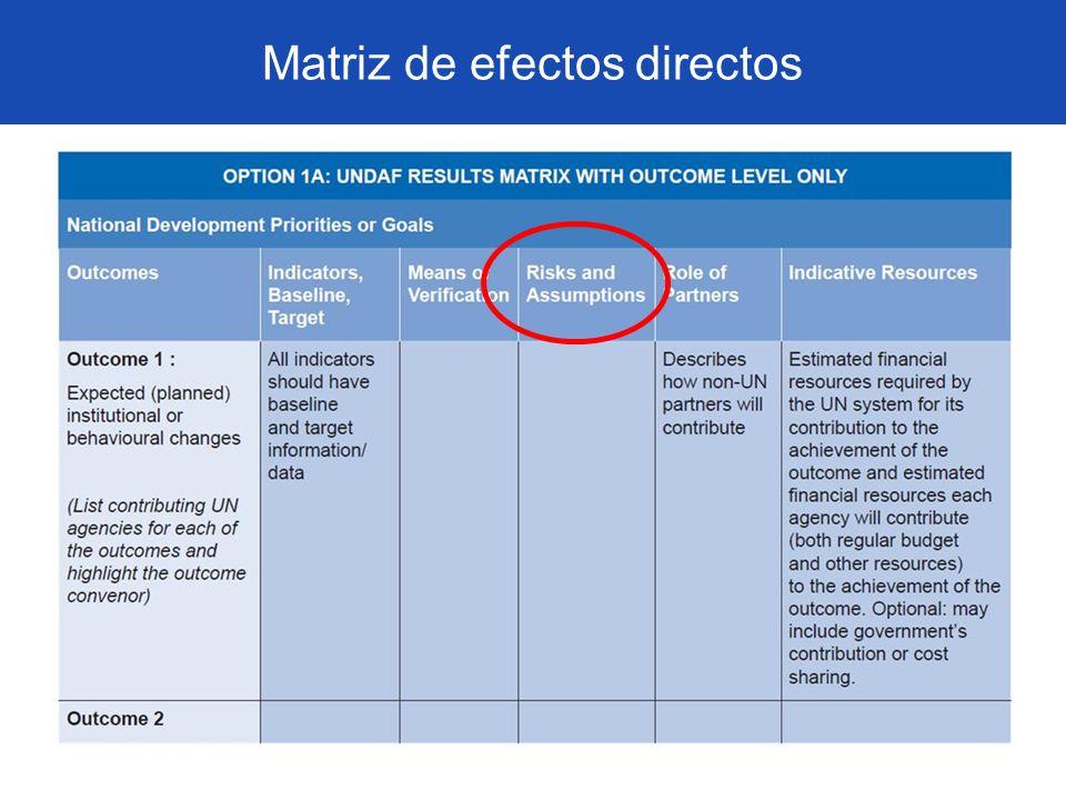 Matriz de efectos directos