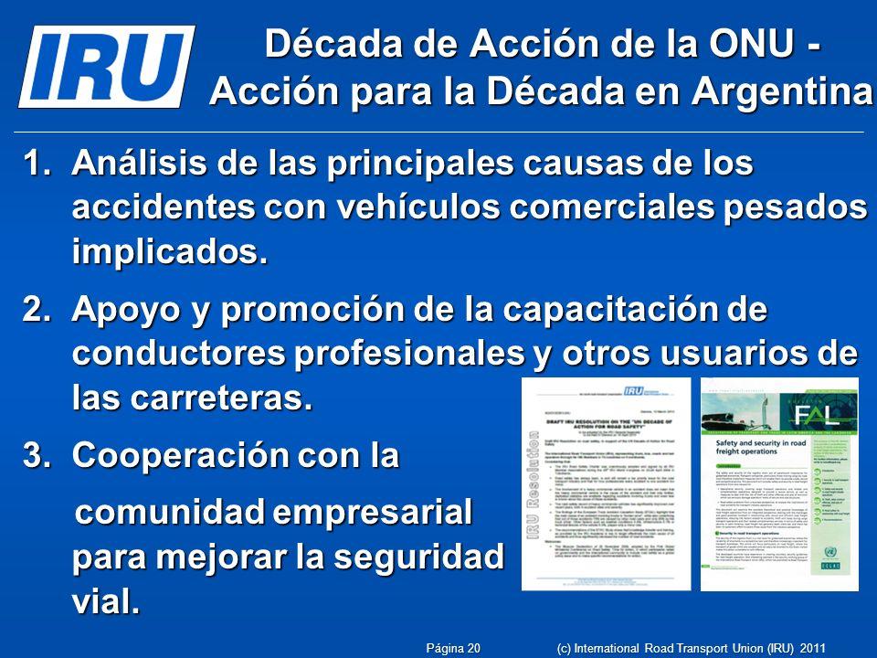 Década de Acción de la ONU - Acción para la Década en Argentina 1.Análisis de las principales causas de los accidentes con vehículos comerciales pesad