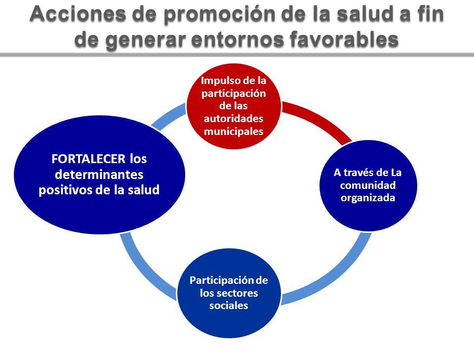 FORTALECER los determinantes positivos de la salud Impulso de la participación de las autoridades municipales A través de La comunidad organizada Part