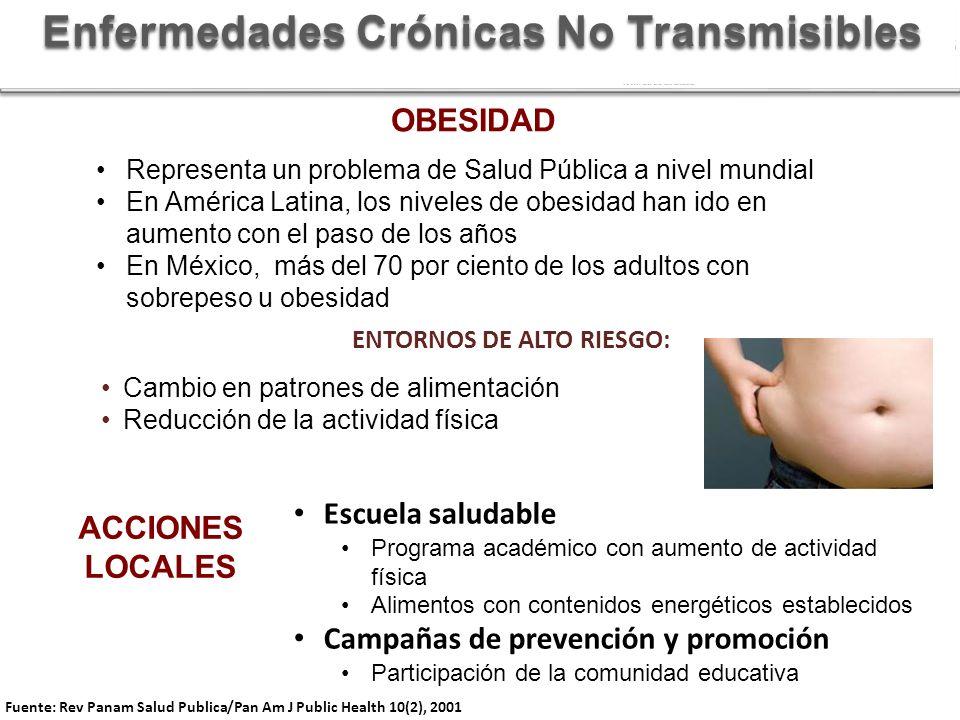 ENTORNOS DE ALTO RIESGO: Cambio en patrones de alimentación Reducción de la actividad física Fuente: Rev Panam Salud Publica/Pan Am J Public Health 10