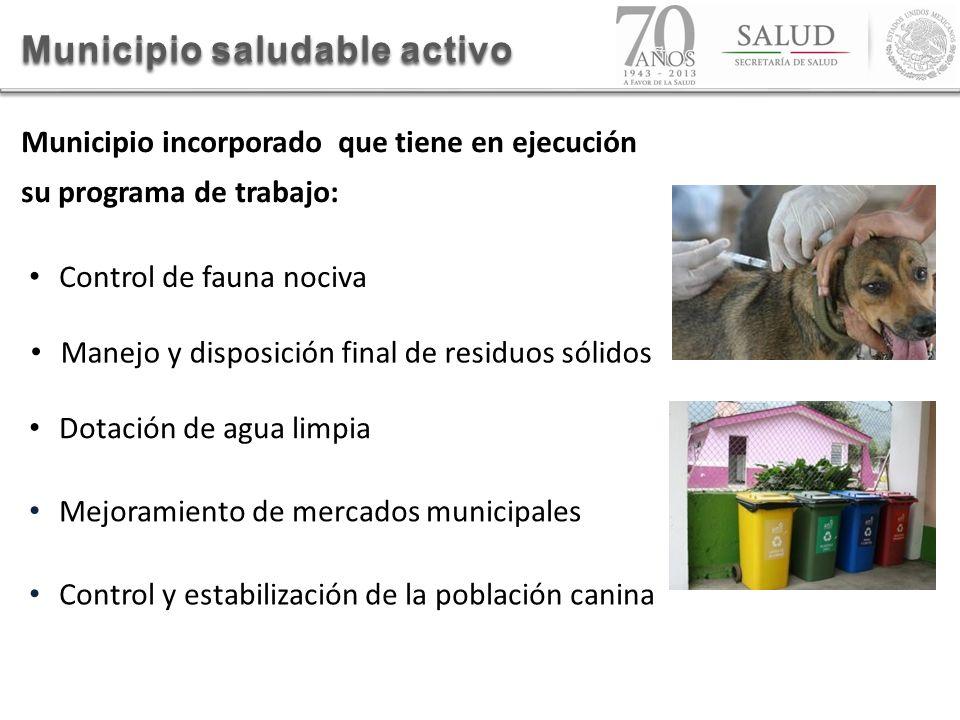 Mejoramiento de mercados municipales Control y estabilización de la población canina Manejo y disposición final de residuos sólidos Dotación de agua l