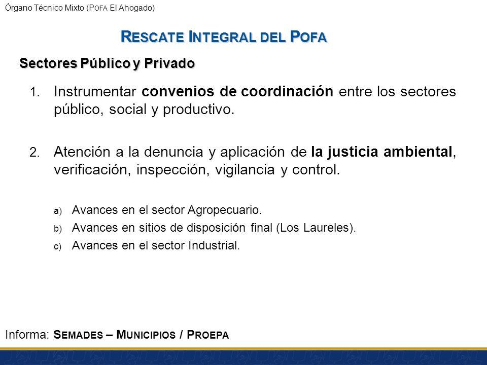 Órgano Técnico Mixto (P OFA El Ahogado) Salud pública: R ESCATE I NTEGRAL DEL P OFA Informa : SSJ Presentación del SSJ