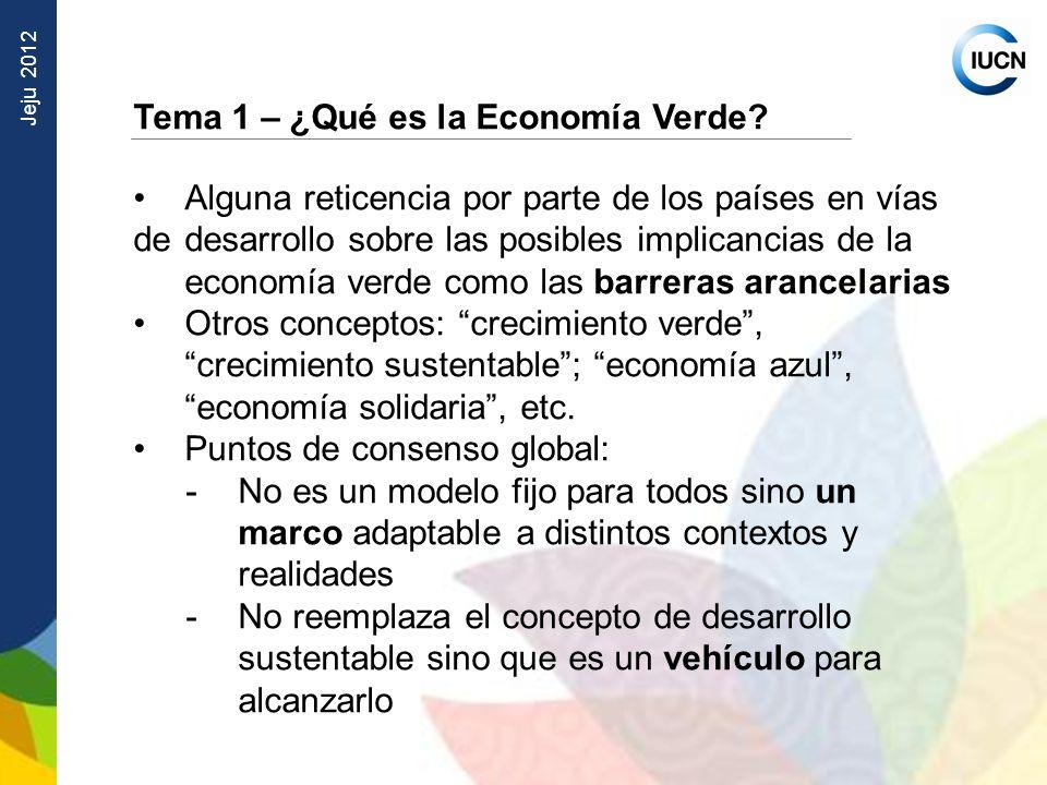 Jeju 2012 Tema 1 – ¿Qué es la Economía Verde? Alguna reticencia por parte de los países en vías de desarrollo sobre las posibles implicancias de la ec