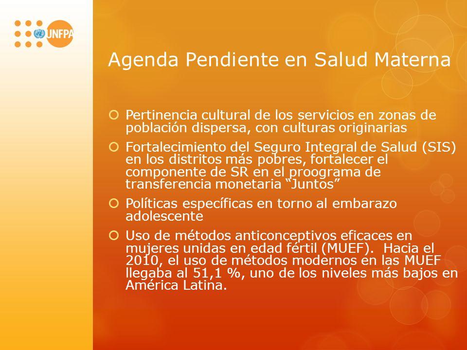 Agenda Pendiente en Salud Materna Pertinencia cultural de los servicios en zonas de población dispersa, con culturas originarias Fortalecimiento del S