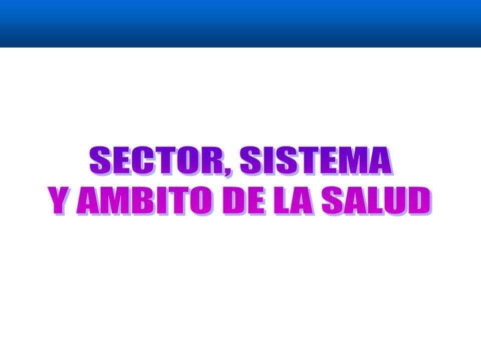 Sub Sistema Formal de Servicios de Salud Sub sistema No Formal de Servicios de Salud Sector Salud Ambito de la Salud SECTOR, SISTEMA Y AMBITO