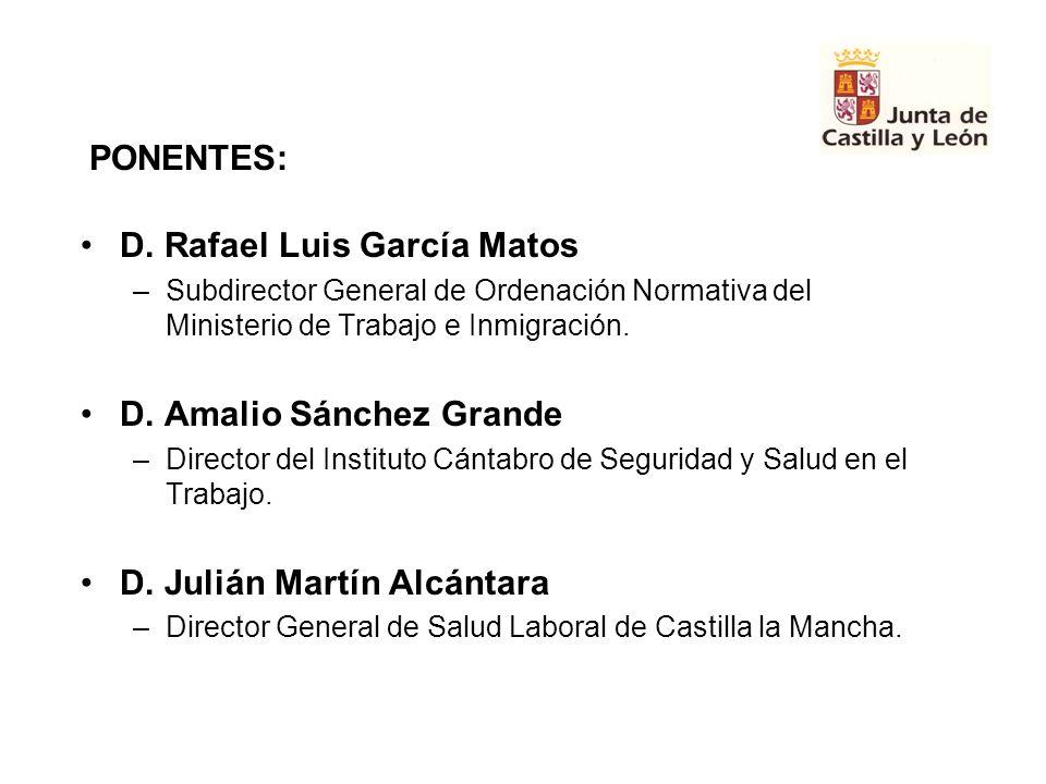 D. Rafael Luis García Matos –Subdirector General de Ordenación Normativa del Ministerio de Trabajo e Inmigración. D. Amalio Sánchez Grande –Director d