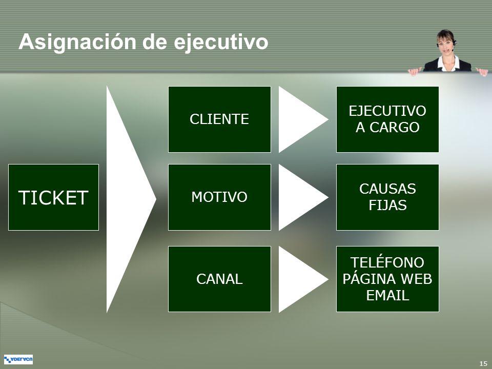 15 CLIENTE MOTIVO TICKET CANAL EJECUTIVO A CARGO CAUSAS FIJAS TELÉFONO PÁGINA WEB EMAIL Asignación de ejecutivo