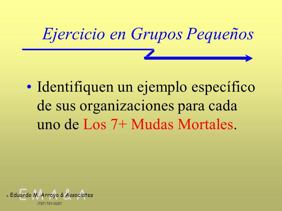 E M A & A © Eduardo M. Arroyo & Associates (787) 781-0287 Ejercicio en Grupos Pequeños Identifiquen un ejemplo específico de sus organizaciones para c