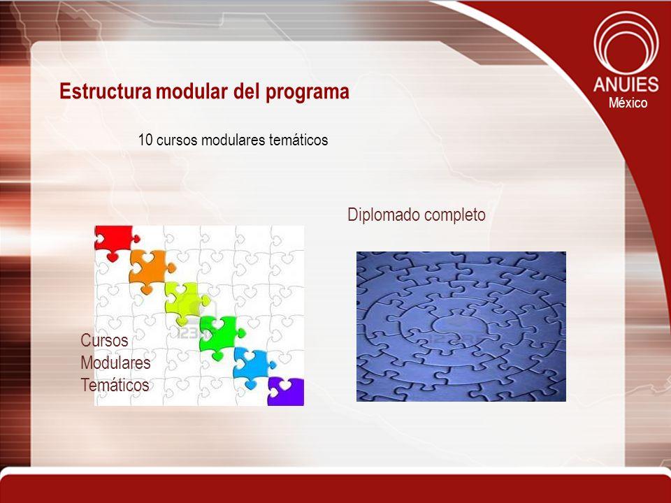 México Estructura modular del programa 10 cursos modulares temáticos Diplomado completo Cursos Modulares Temáticos