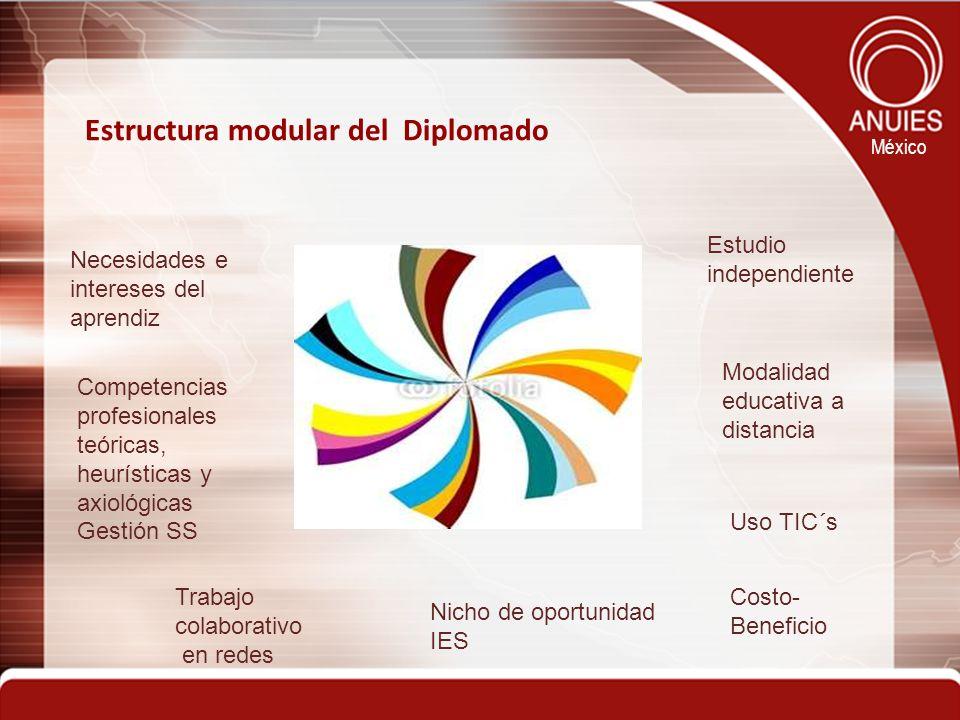México Estructura modular del Diplomado Estudio independiente Necesidades e intereses del aprendiz Competencias profesionales teóricas, heurísticas y