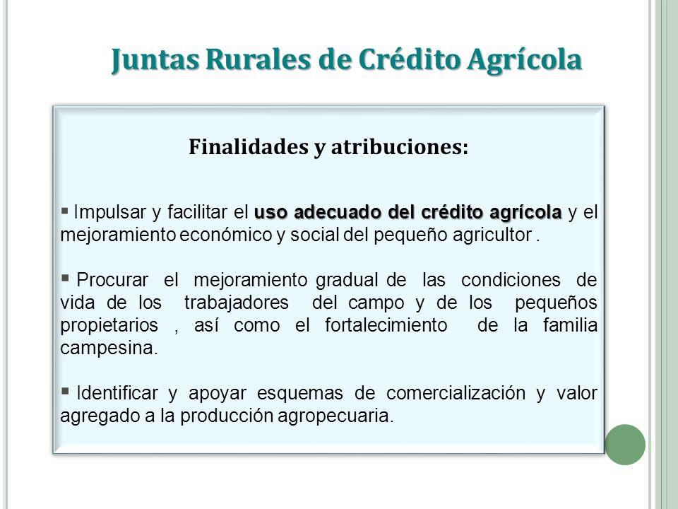 Juntas Rurales de Crédito Agrícola Finalidades y atribuciones: uso adecuado del crédito agrícola Impulsar y facilitar el uso adecuado del crédito agrí