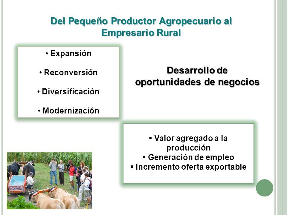 Del Pequeño Productor Agropecuario al Empresario Rural Expansión Reconversión Diversificación Modernización Expansión Reconversión Diversificación Mod