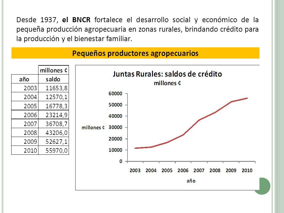Desde 1937, el BNCR fortalece el desarrollo social y económico de la pequeña producción agropecuaria en zonas rurales, brindando crédito para la produ