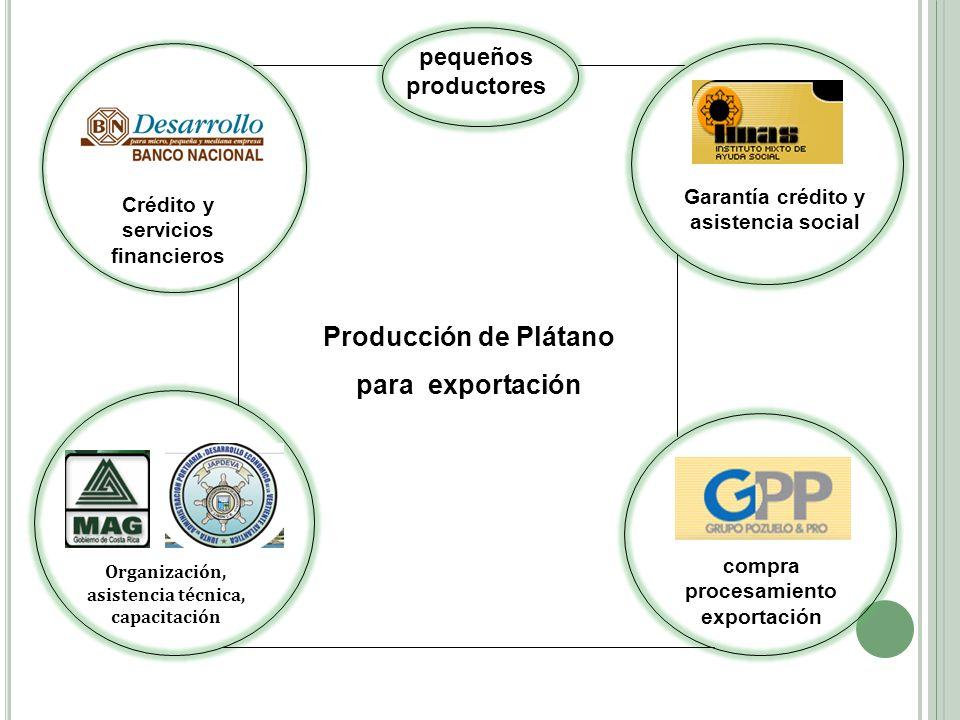 Crédito y servicios financieros Organización, asistencia técnica, capacitación compra procesamiento exportación Garantía crédito y asistencia social P