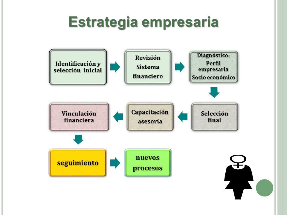 Identificación y selección inicial RevisiónSistemafinanciero Diagnóstico: Perfil empresaria Socio económico Selección final Capacitaciónasesoría Vincu