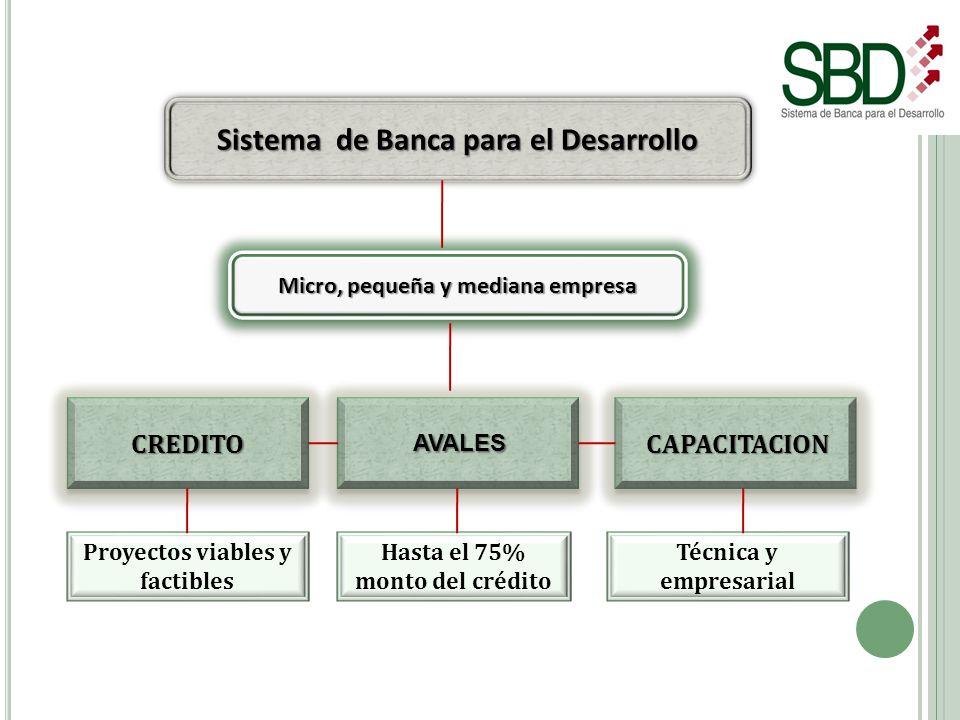 Sistema de Banca para el Desarrollo CREDITOCREDITO CAPACITACION AVALES Micro, pequeña y mediana empresa Proyectos viables y factibles Hasta el 75% mon