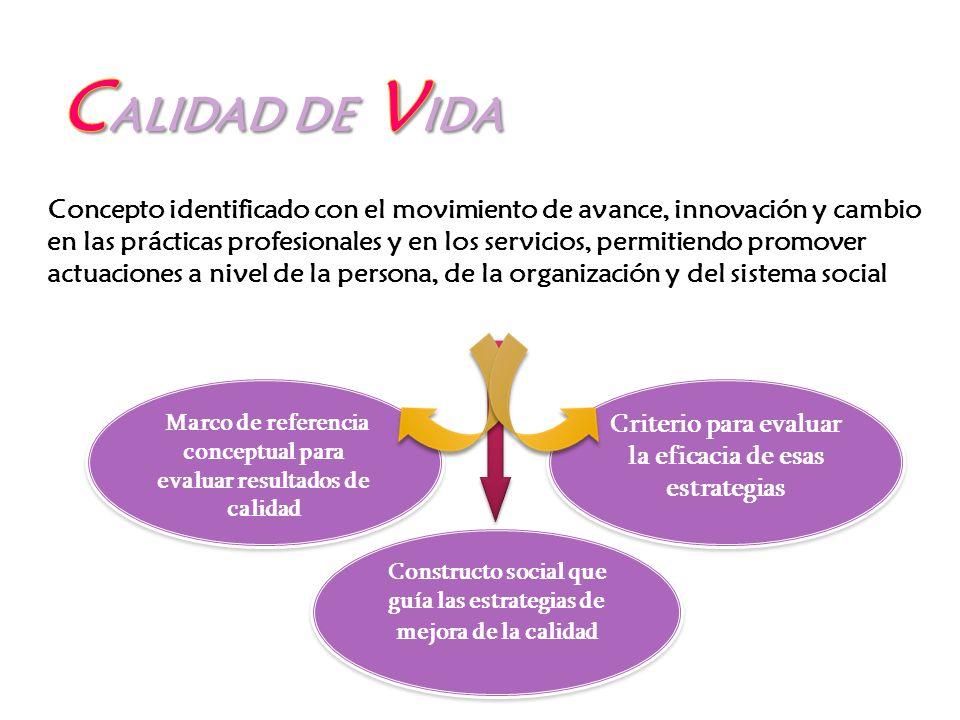Concepto identificado con el movimiento de avance, innovación y cambio en las prácticas profesionales y en los servicios, permitiendo promover actuaci