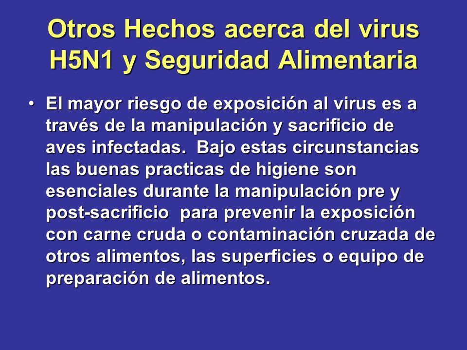 Otros Hechos acerca del virus H5N1 y Seguridad Alimentaria El mayor riesgo de exposición al virus es a través de la manipulación y sacrificio de aves
